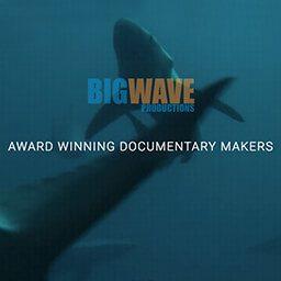 big wave tv
