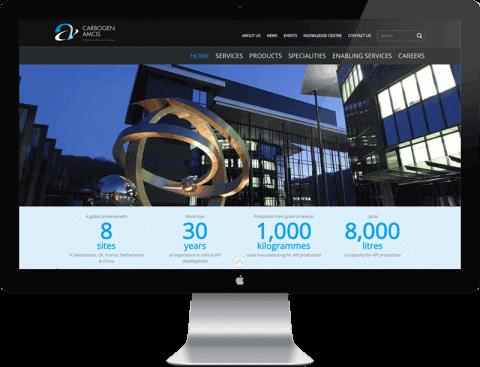 Web Design for Carbogen Amcis, Bubendorf, Switzerland